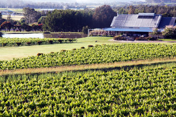 Private Hunter Valley Day Trip from Sydney Including Wine, Chocolate...
