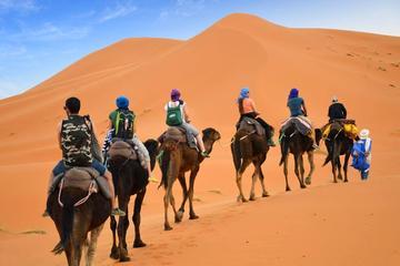 Camel trek from merzouga sahara