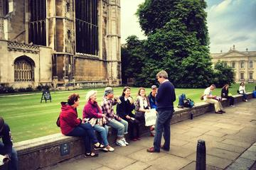Combo ticket: Punting & Walking Tour...