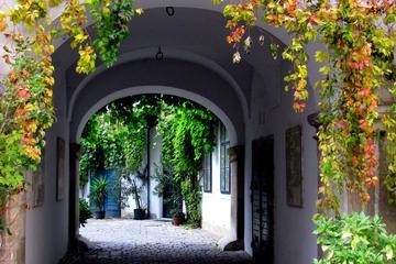 Hidden Gems in Vienna Inner City Private Walking Tour
