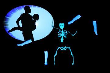 Cinderella Shadow and Phantom Black Light Theatre in Prague