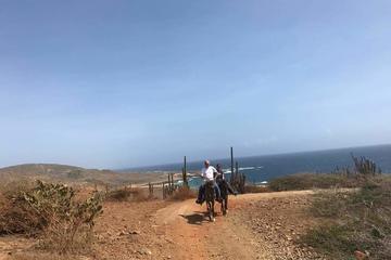Andicuri Beach Rancho Loco Aruba