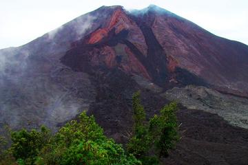 Private Tour One Day Hike - Pacaya Volcano from Puerto Quetzal