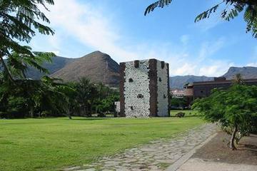 Excursion privée: excursion d'une journée à La Gomera au départ de...