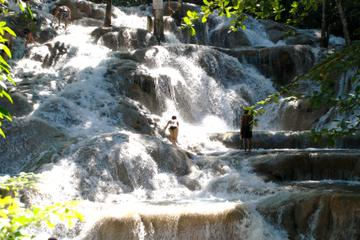 Dunn's River Falls and Fern Gully Highlight Tour
