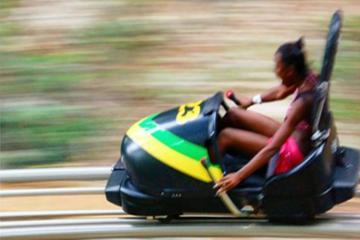Mystic Mountain Zipline or Bobsled Adventure from Kingston