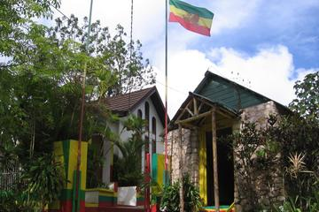 Private Full-Day Tour to Blue Hole Fern Gully and The Bob Marley Home and Mausoleum, from Kingston