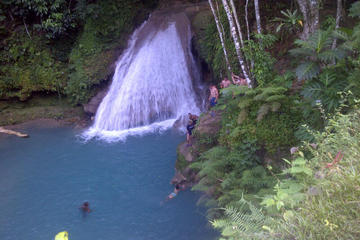Private Tour: Blue Hole and Fern Gully Rain Forest Adventure from...