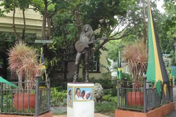Tour del museo di Bob Marley da Ocho