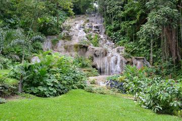 Tour delle Konoko Falls e del