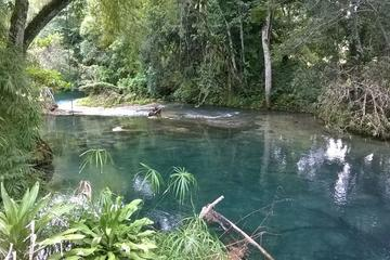 Visite privée : aventure à Blue Hole et dans la forêt tropicale de...