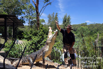 Private Shoalhaven Zoo Experience from Sydney