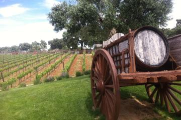 Private Winery Visit and Tour of...