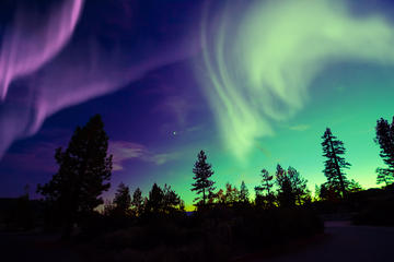 Small-Group Northern Lights Tour by...