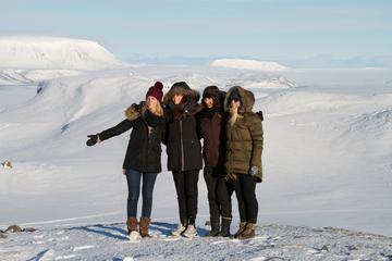 Tagesausflug in kleiner Gruppe nach Thorsmork und Eyjafjallajokull ab...