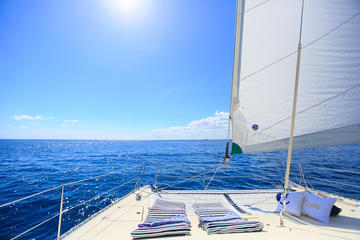 Half-Day Private Catamaran Tour with
