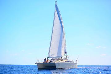 Private VIP Catamaran Tour with Personal Chef in Playa del Carmen
