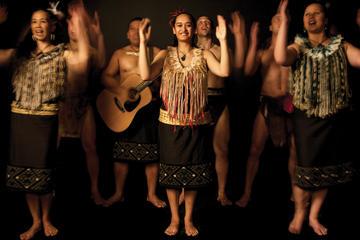 Eintritt in das Auckland Museum inklusive Vorstellung der Maori