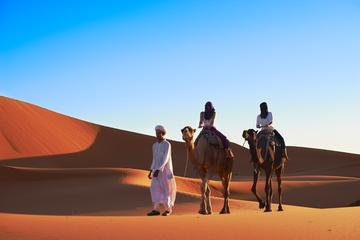 4-Night Marrakech to Fez Sahara Tour with Night in Desert Camp and Camel Trek