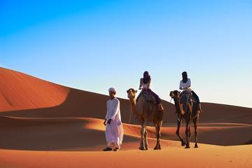 4-Night Marrakech to Fez Sahara Tour
