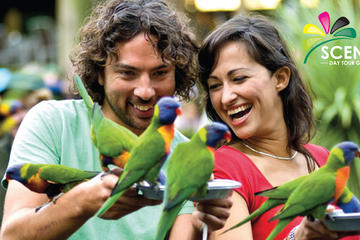 Currumbin Wildlife Sanctuary and Tropical Fruit World Day Trip from Gold Coast