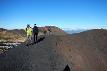 Small Group Tour: Etna wine and...