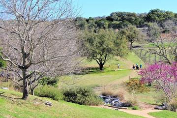Day Trip Marble Falls Wine Tasting and Disc Golf Package near Marble Falls, Texas