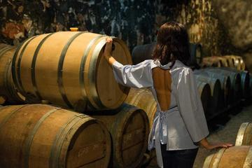 Wine Tour - Explore the Cretan Wines And Spirits