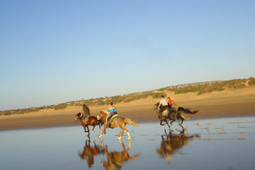 Horse Ride on the Beach in Essaouira