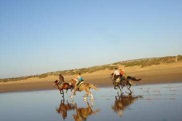 Promenade à cheval sur la plage d'Essaouira