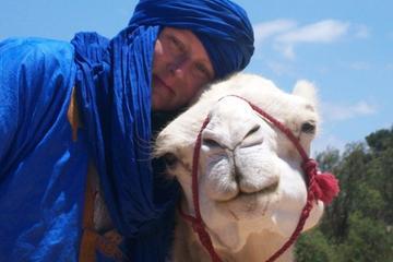 Promenade à dos de chameau sur la...