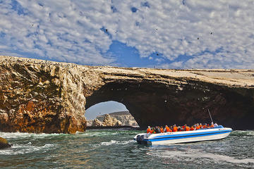 Ballestas Islands Group Tour from San...