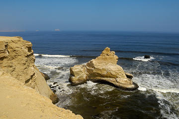 Private Full Day Tour of Paracas from San Martin P