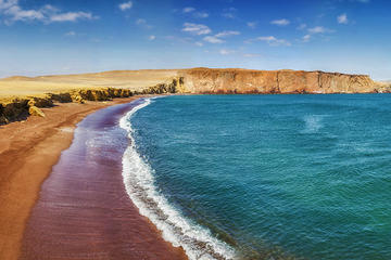 Private Tour to Paracas Reserve