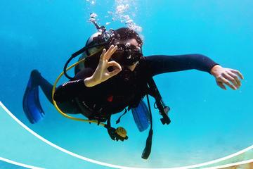 Advanced Adventurer Diver