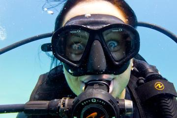 Fun Dive
