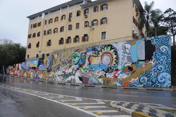 Excursão Particular de arte de rua em São Paulo
