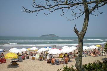 Excursión privada: Excursión de un día a las playas y cafetales desde...
