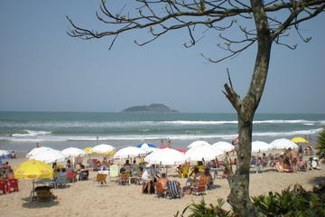 Private Tour: Coffee and Beaches Day Trip from São Paulo