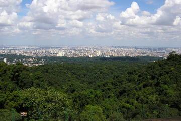 Recorrido ecológico en privado al Parque Estatal de Cantareira desde...