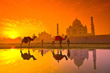 Taj Mahal with local guide full day tour agra
