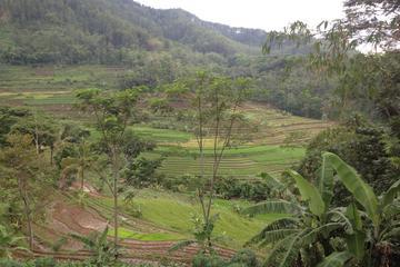Borobudur and Hidden Sanctuary