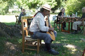 Excursión de día completo a una estancia en San Antonio de Areco...