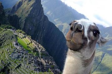 Recorrido privado de 8 días a Lima y Cuzco con todo incluido