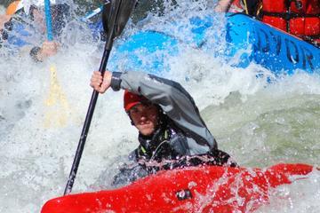 Arkansas River Half-Day Rafting Tour
