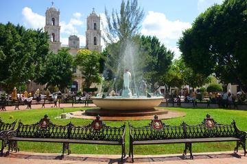 5 días de Yucatecas Rosa, Verde y Azul