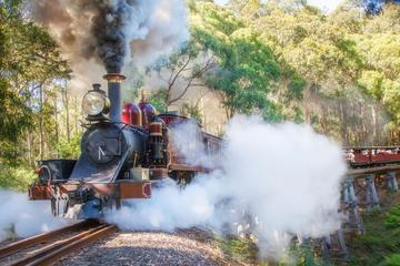 Puffing Billy and Mount Dandenong Private Tour
