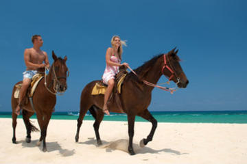 Cozumel Beach Horseback Riding Tour