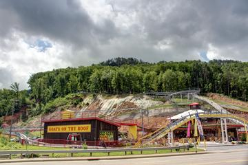 Book Pigeon Forge: The Coaster at Goats on the Roof on Viator