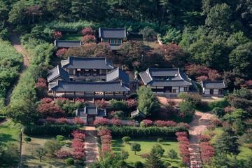 ソウル出発、安東市の文化を巡る日帰り旅行